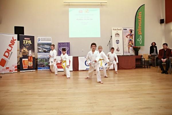 Vystoupení Oddílu sportovního karate Náchod